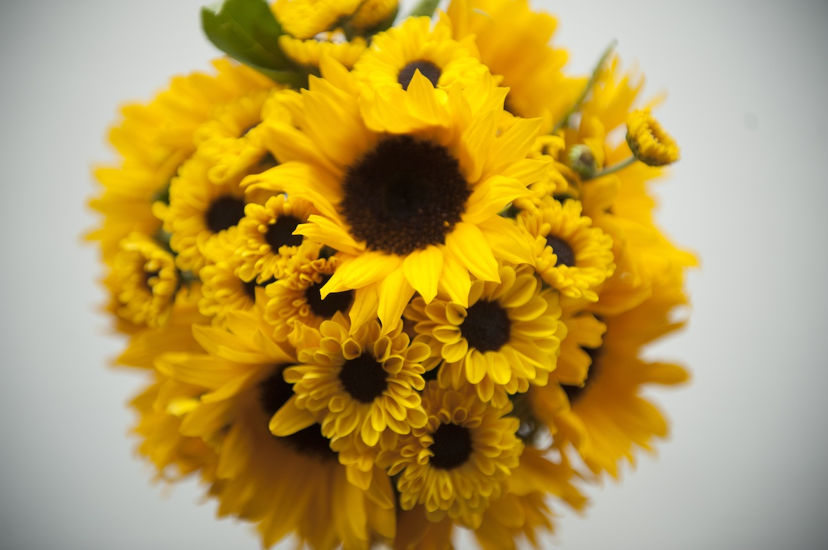 close-up-sunflower-bouquet-flowers-yellow-bunch-large.jpg